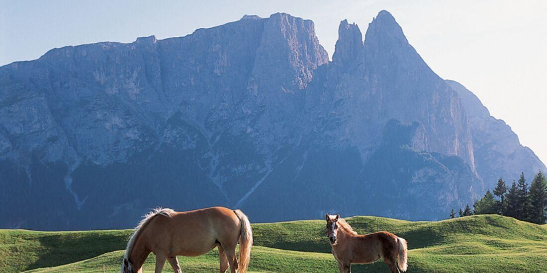 Dolomiten_UNESCO_var20030326_071_hri (jpg)
