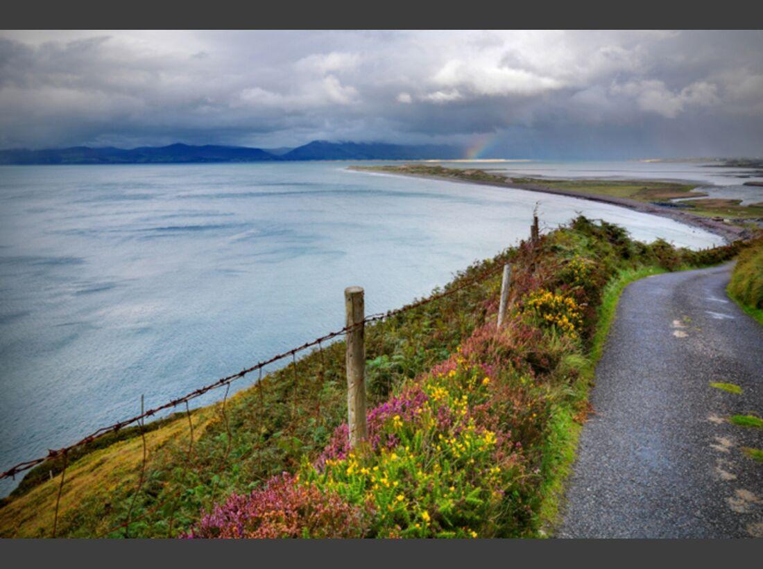 Impressionen aus Irland - Kerry Way 23