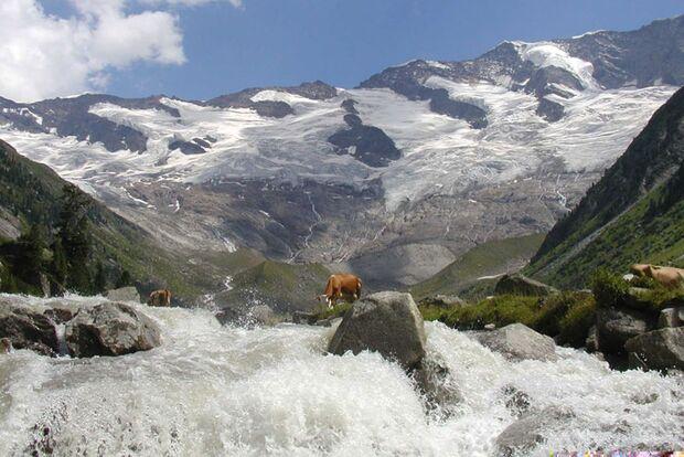 OD 0111 Reise Nationalparks Oesterreich Hohe Tauern (jpg)