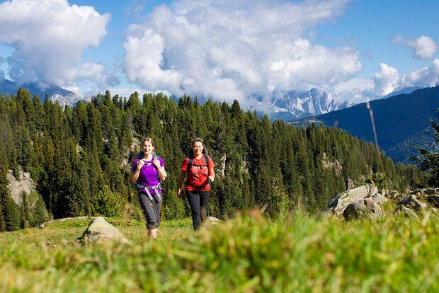 OD 0117 Palarunde Dolomiten Italien 08