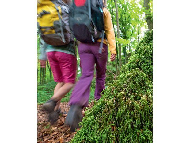 OD-0714-Luxemburg-Mullerthal-Trail-10