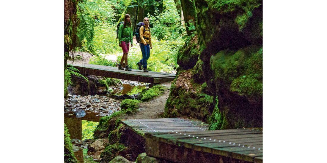 OD-0714-Luxemburg-Mullerthal-Trail-12