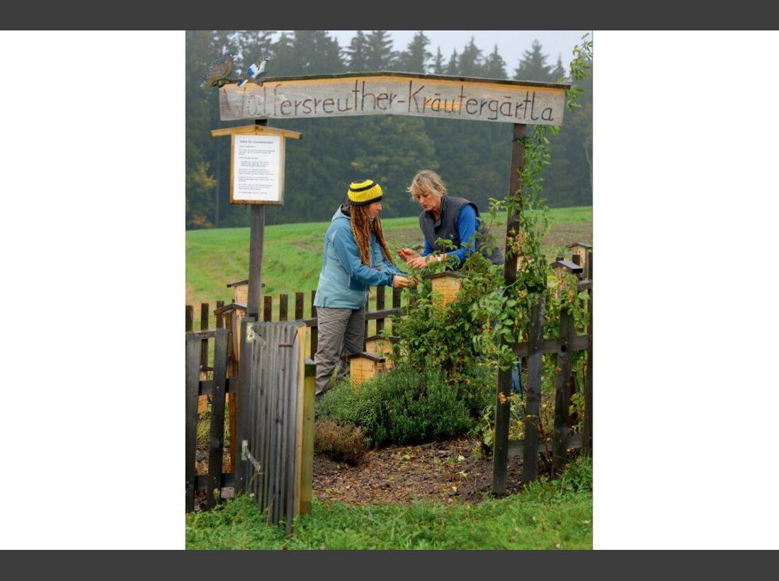 OD 0811 kraeuterwissen kraeutergarten (jpg)