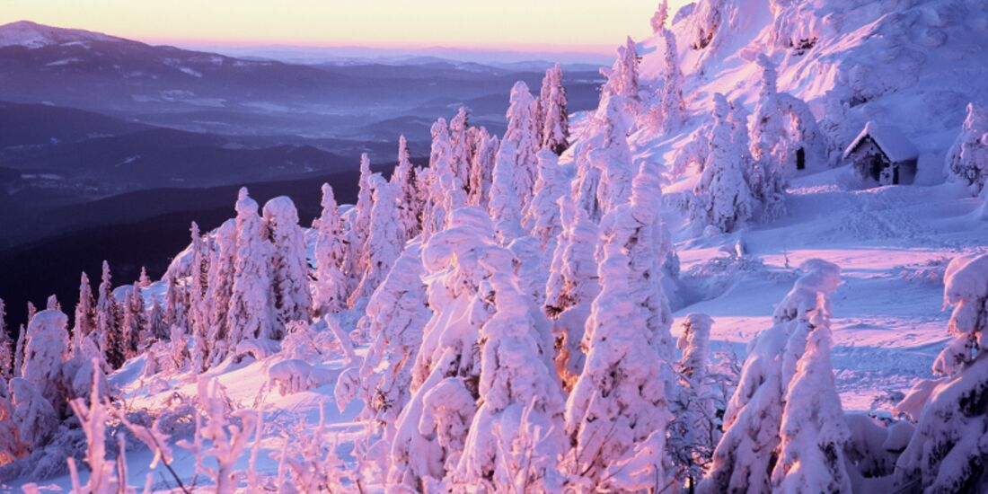 OD-2014-Bayern-Winter-Special-Bayrischer-Wald-4-Guenter-Moser (jpg)