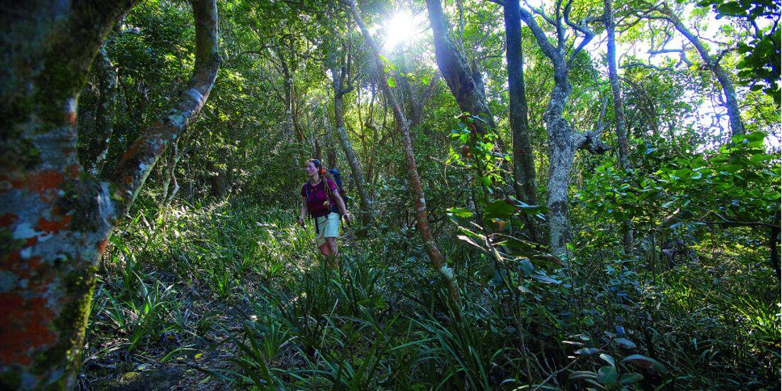 OD 2014 Otter Trail Suedafrika