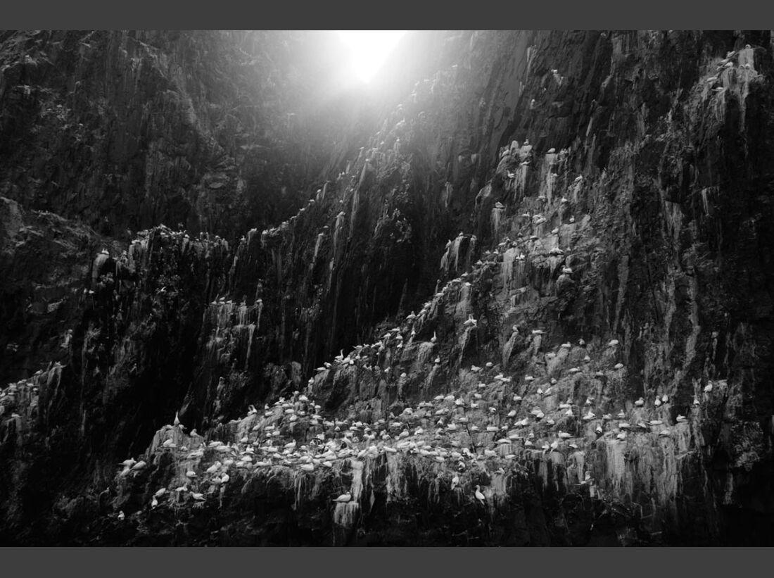 OD_GDT_2013_K1_01_Zoltan_Gergely_Nagy_Morgendaemmerung_am_Bass_Rock-Dawn_at_Bass_Rock (jpg)