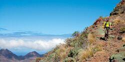 OD Gran Canaria