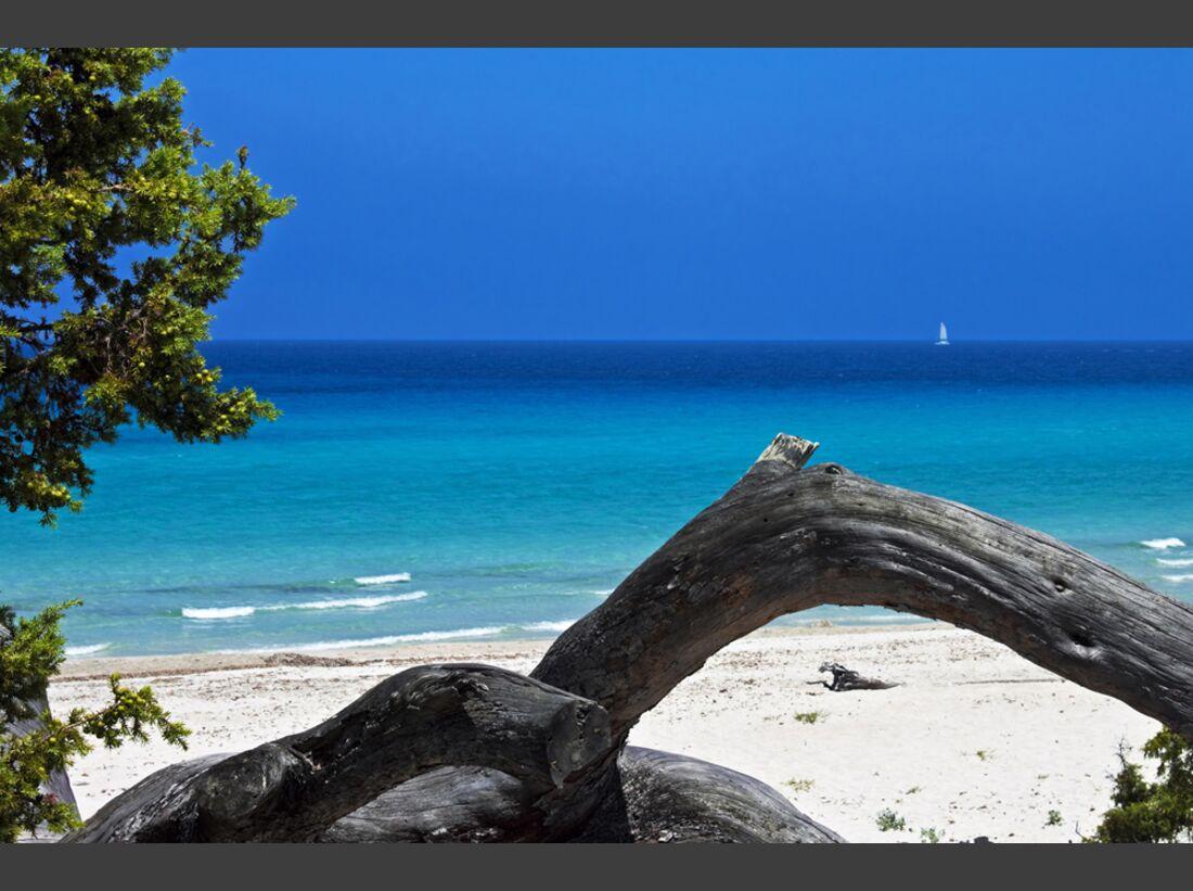OD-Korsika-0313-SalecciaBeach_JayBeiler_Dreamstime (jpg)