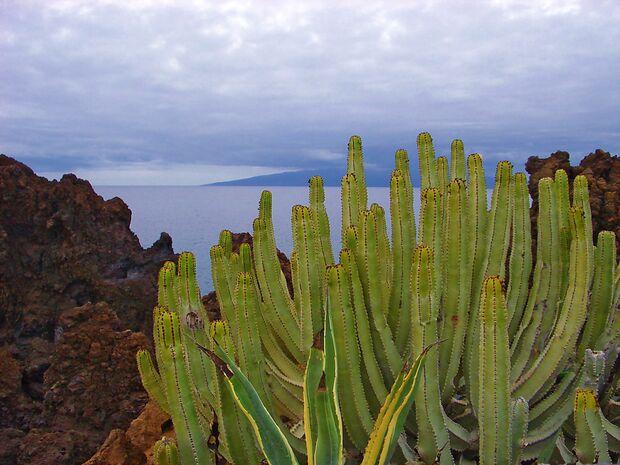 OD La Gomera Kanaren Insel Meer pixelio