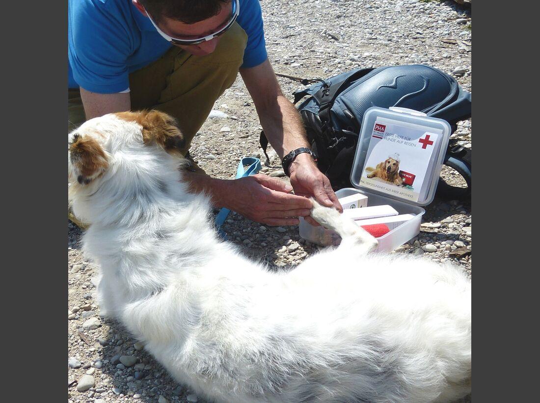 OD-PHA-Erste-Hilfe-Set-Hund-Wundversorgung (jpg)