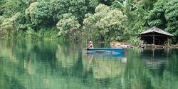 OD Regenwald Khao Sok Nationalpark Thailand