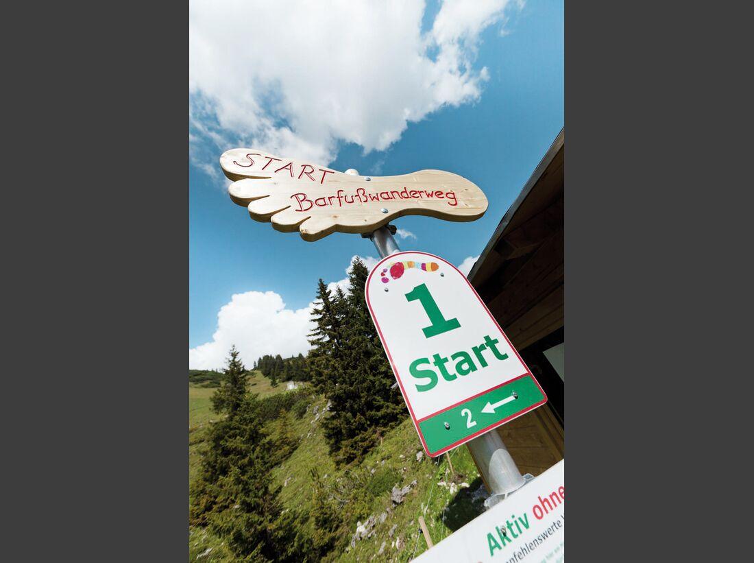 OD-Tirol-Bergsommer-Lechtal-1 (jpg)