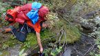 Wildnis-Trekking im Sarek 6