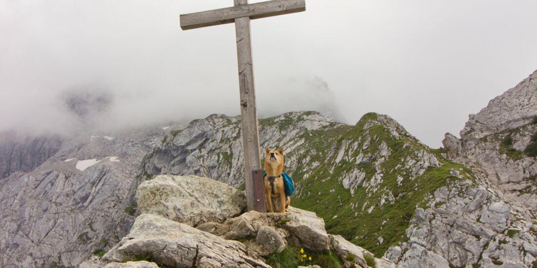 od-2017-gipfelfotos-nicole-gogolok-Garmisch (jpg)