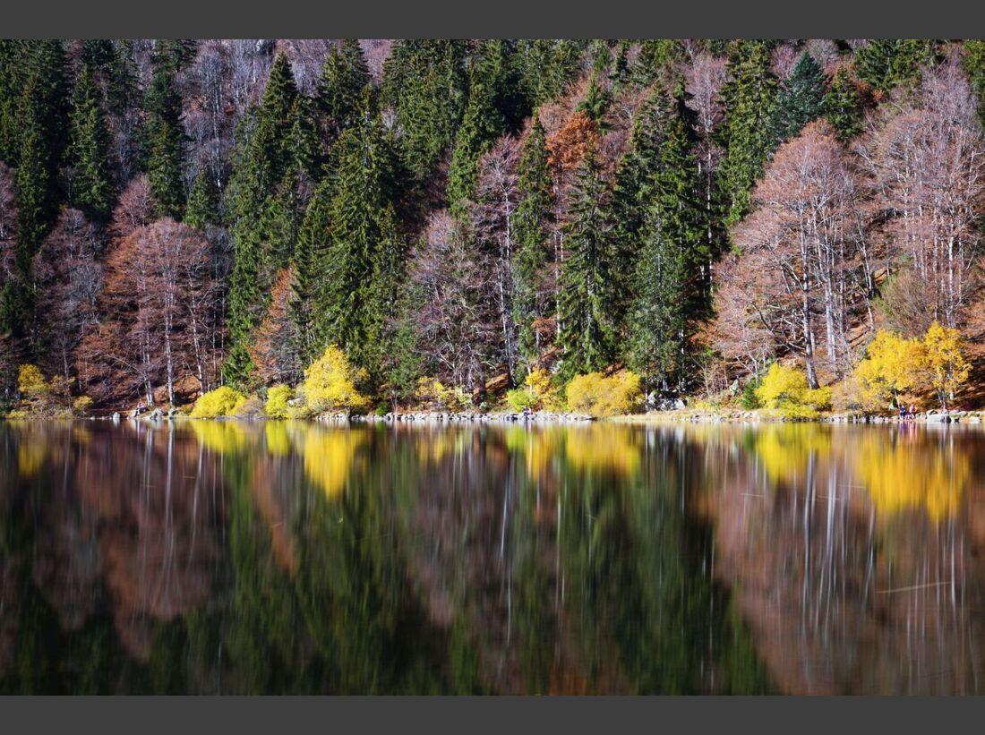 od-2018-Hochschwarzwald-Feldsee im Herbst (jpg)