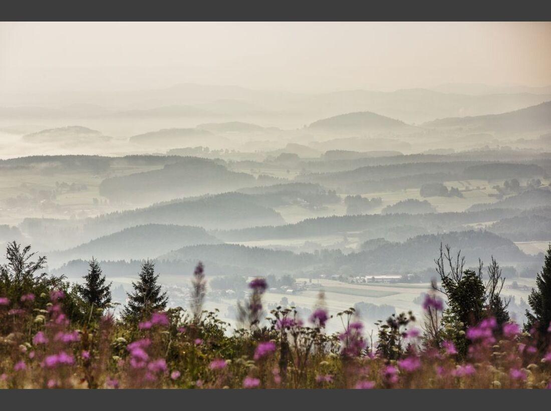 od-sh-2015-bayern-bayerwald-9 (jpg)
