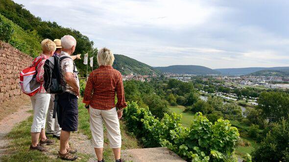 od-sh-2015-bayern-mainland-Klingenberg (jpg)